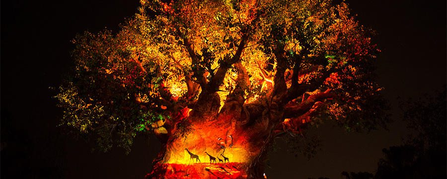 tree-of-life-hero